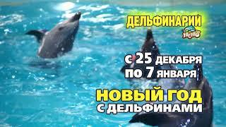 Новогоднее шоу Минского дельфинария Немо 2018