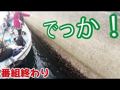 【終了のお知らせ】堤防の外側から釣りをするだけで・・・
