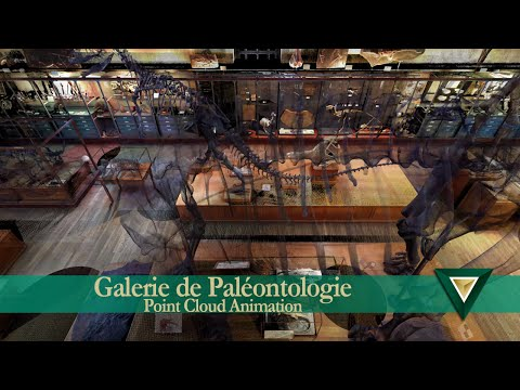 Gallery of Paleontology Point Cloud Animation