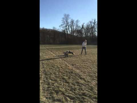 Dog Runs Opposite Way of Frisbee