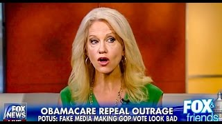 Kellyanne Conway wants Democrats to stop 'Jeering' Trumpcare 'From the cheap seats'