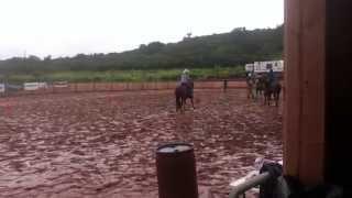 Horseback Riding in 2011, Haleiwa Hawaii
