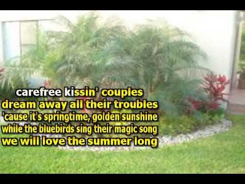 karaoke gary lewis green grass