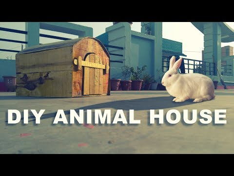DIY Animal House (Wooden) | 🐇 Bunny House | Rabbit Cage | Puppy House - Dizineed