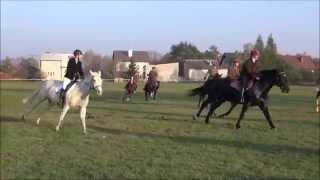 VI Hubertus Węgrowski - Klub Jeździecki w Węgrowie