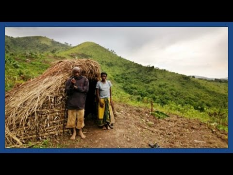 Batwa: Uganda and the human story behind gorilla tourism | Guardian Features