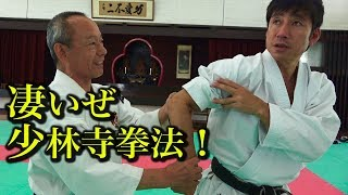 凄いぜ、少林寺拳法!驚愕の4時間を語り尽くす!Talk about Shorinji-kempo