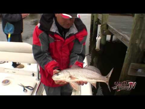 Carolina fishing tv season 3 13 wintertime creek for Carolina fishing tv