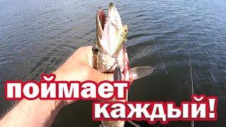 СУПЕР ПРИМАНКА Новичку ПОЙМАЕТ КАЖДЫЙ Спиннинг для начинающих Рыбалка на щуку