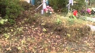 ВОВ Деревня Красотинки смоленской обл, госпиталь