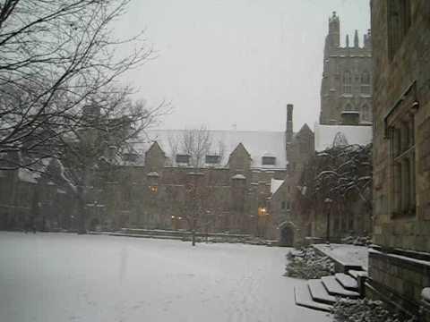 Snow at Yale University