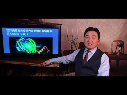 """《石涛聚焦》「武汉病毒被命名:非典SARS2.0」习总""""买下""""WHO力保""""天命伟人"""""""