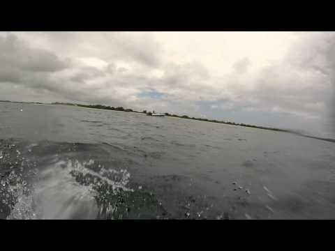 Attaque requin chasse sous marine Port gentil.mp4