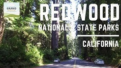 Ep. 53: Redwood National Park | California RV travel camping
