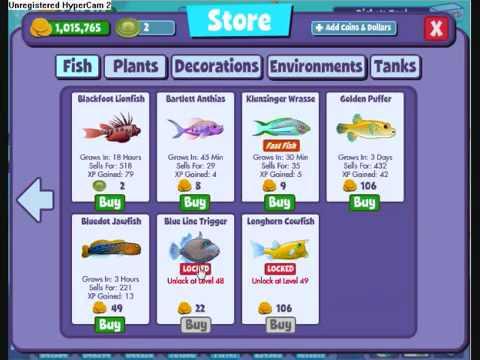 Fishville Guide - Fast Level 47