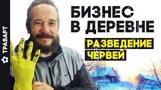Бизнес в деревне Разведение червей 6 месяцев спустя Жизнь в деревне ТРАВАРТ  Андрей Протопопов 2714