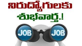 Telangana Govt To Fill Vacant Job Positions | Telangana Govt Jobs Notification | VTube Telugu