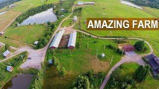 WOW! AMAZING RUSSIAN SHEEP FARM. А new breed of Russian sheep - KATUM