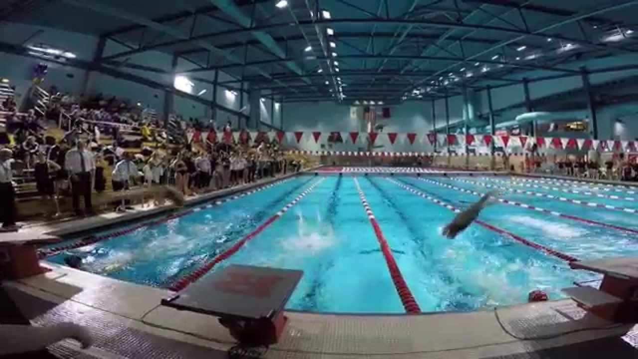Northeastern university swim dive 2014 15 youtube - Northeastern university swimming pool ...