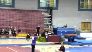 JoElle Level 5 vault TWU