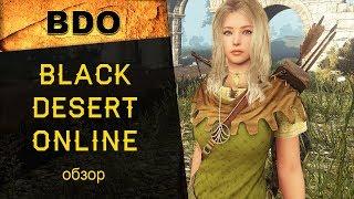 Black Desert Online (BDO): краткий обзор ММОРПГ онлайн-игры, где поиграть