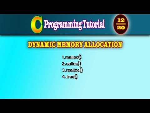 C Programming Tutorial DAY 12 |Dynamic Memory Allocation |malloc | calloc|realloc|free|CodeDeveloper thumbnail