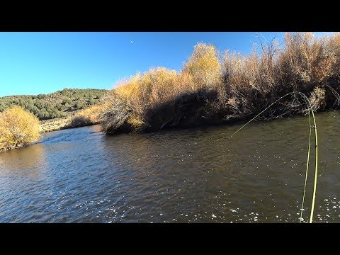 East Walker River, CA - End Of Oct 2017