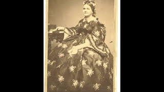 Mary Lincoln's Strawberry Dress