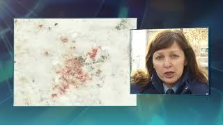 Страшные подробности убийства бизнесмена и ребенка в Оренбурге: связали, зарезали и сожгли