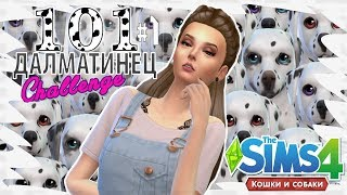 """★The Sims 4 Кошки и Собаки: Challenge """"101 Далматинец"""" #1 - ОНА МАЛЬЧИК?! ★"""