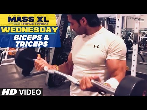 Wednesday : Biceps & Triceps - MASS XL - Muscle Building Program