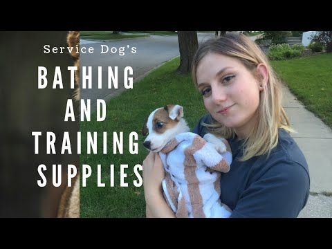 Service Dog Bathing and Training supplies!