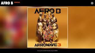 Afro B - Amina (Audio)
