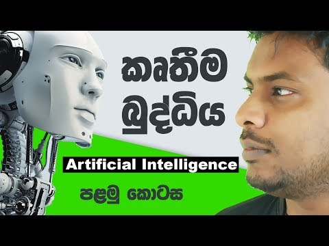 Artificial Intelligence 🧠 🇱🇰 Episode 01