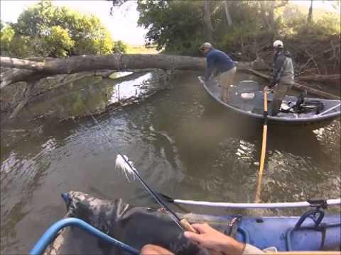 Kentucky musky fly fishing 9 14 2014 youtube for Fly fishing kentucky