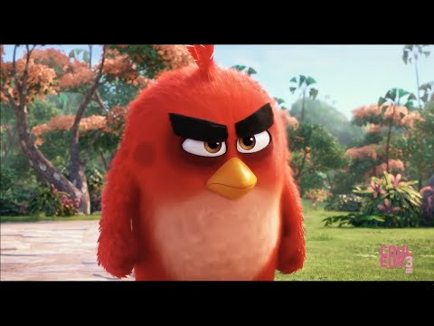 Brazil - Screen Test : Eperdument, L'étage du dessous, Angry Bird streaming vf