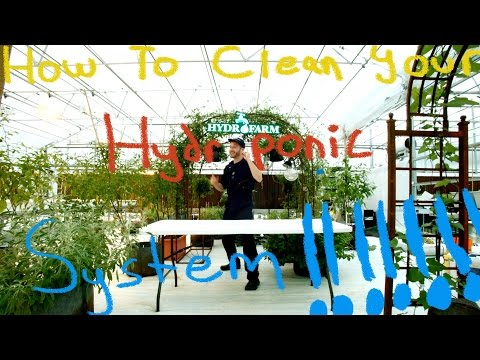 How To Clean A Hydroponic System