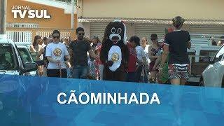 Cãominhada reúne amantes de pets na escola do Catetos