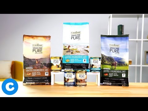 canidae-pure-dog-food-|-chewy