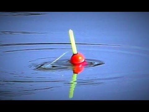 Рыбалка на крупного карася. Чеснок рулит! Экстремальная рыбалка в ...