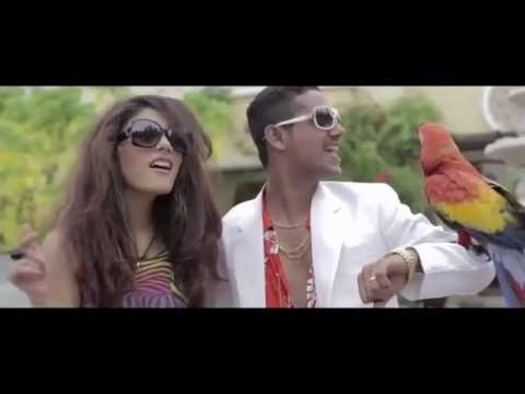 V.I.P   Ali Gul Pir   Official Music Video