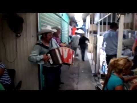 Accordion player - flea market - Juarez, Mexico