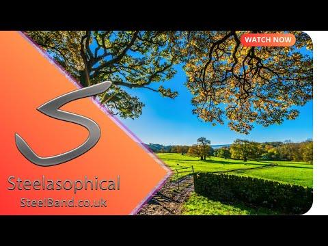 Steelasophical Wedding Brochure   Steelasophical Steel Band Dj