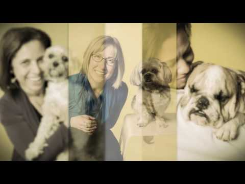 Mars Volunteer Program: Dog Tales Sanctuary and Rescue