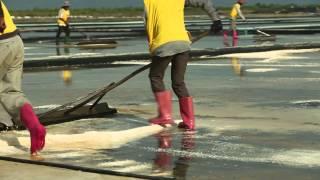 SALT FARM COMMERCIAL VIDEO