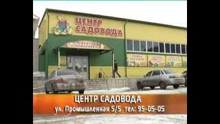 видео Семена томатов в магазине