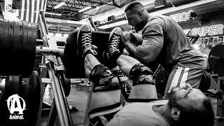 "Training Legs with Vincenzo ""MASS"" Masone & Evan Centopani"