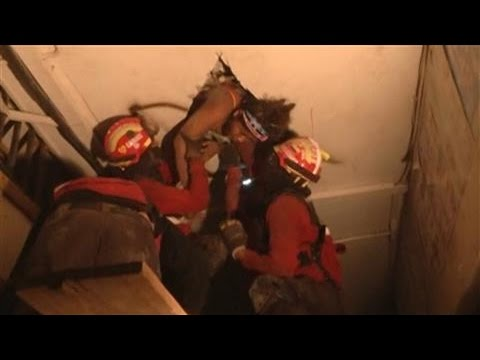 Three Rescued From Ecuador Quake Rubble
