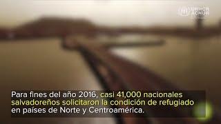Historias de El Salvador: el impacto de la violencia de las pandillas