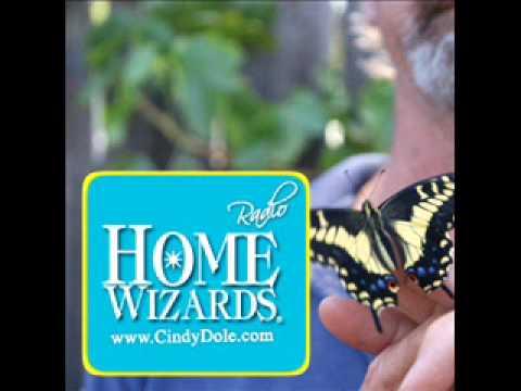 Monarch Butterflies in Your Garden
